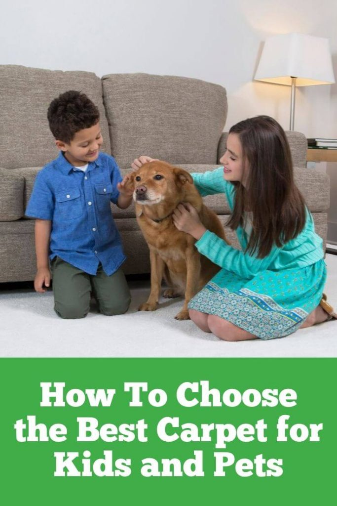 choosing the right carpet for kids and pets