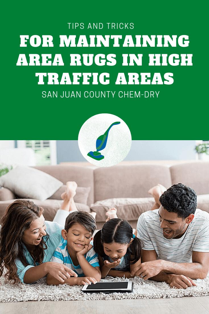 area rug care in Farmington, NM
