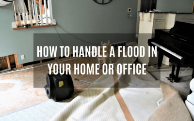 How to Handle a Flood