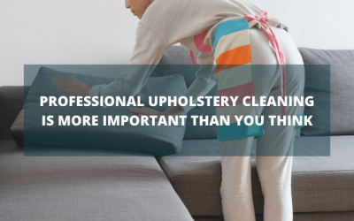 Professional Upholstery Cleaning Is More Important than You Think